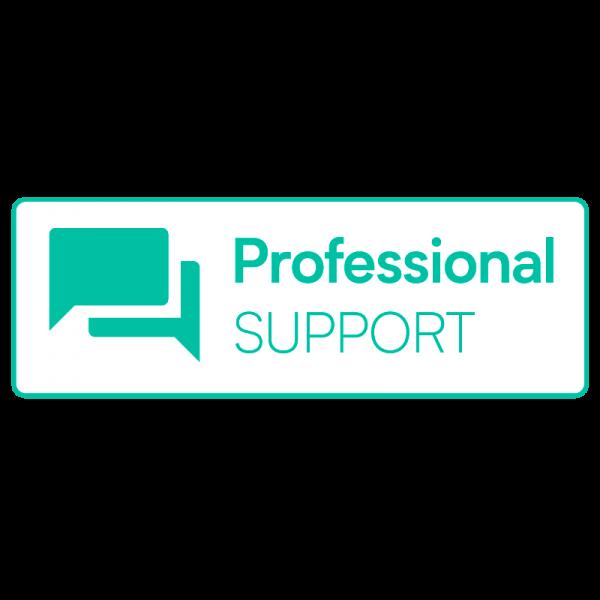 Actindo Professional Support
